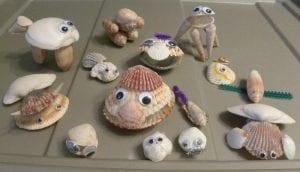 seashell animals