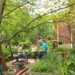 backyard into a beautiful garden