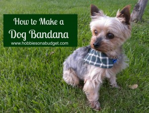 how to make a dog bandana