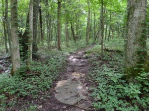 Hiking Trails in Kentucky