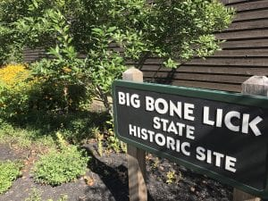 Big Bone Lick State Park, Kentucky