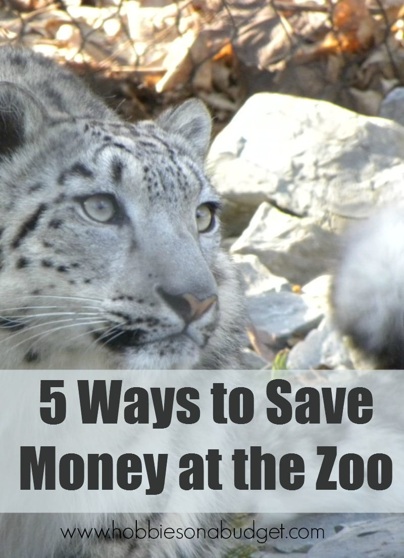 save-money-at-zoo