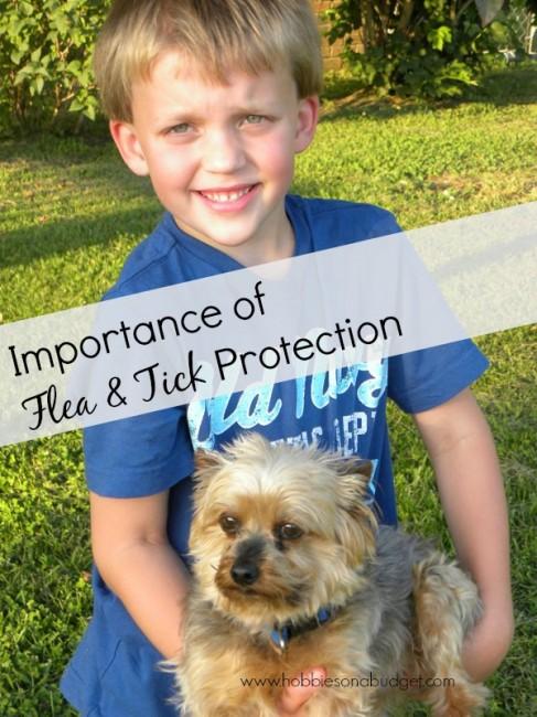 flea-tick-protection