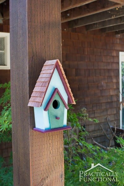 10 easy ideas to feed birds hobbies on a budget for Easy birdhouse ideas