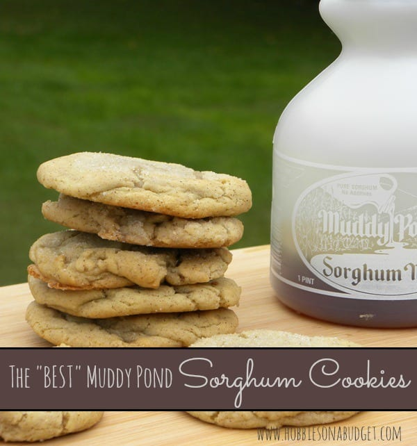 Bake the Best Sorghum Cookies - Hobbies on a Budget