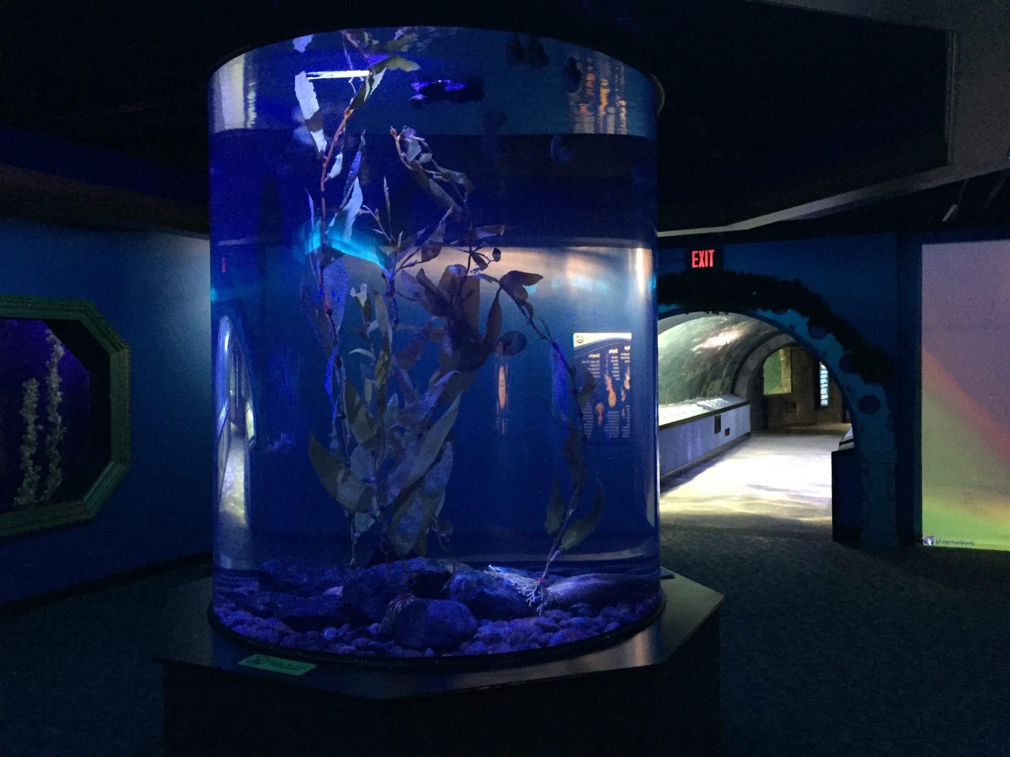 Newport Aquarium, Newport, Kentucky
