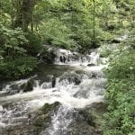 What to See at Mill Springs Mill