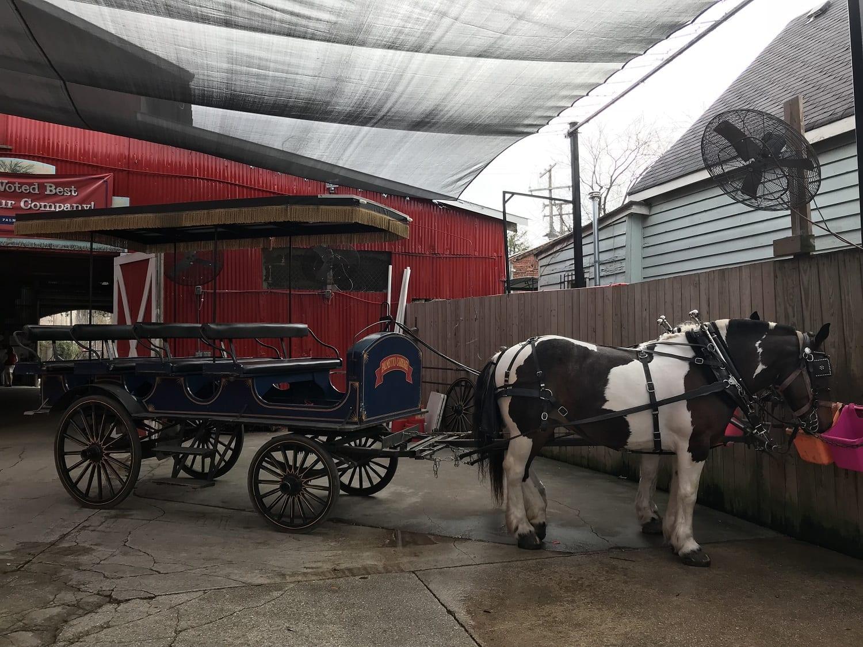 Palmetto Carriage Works Charleston  South Carolina