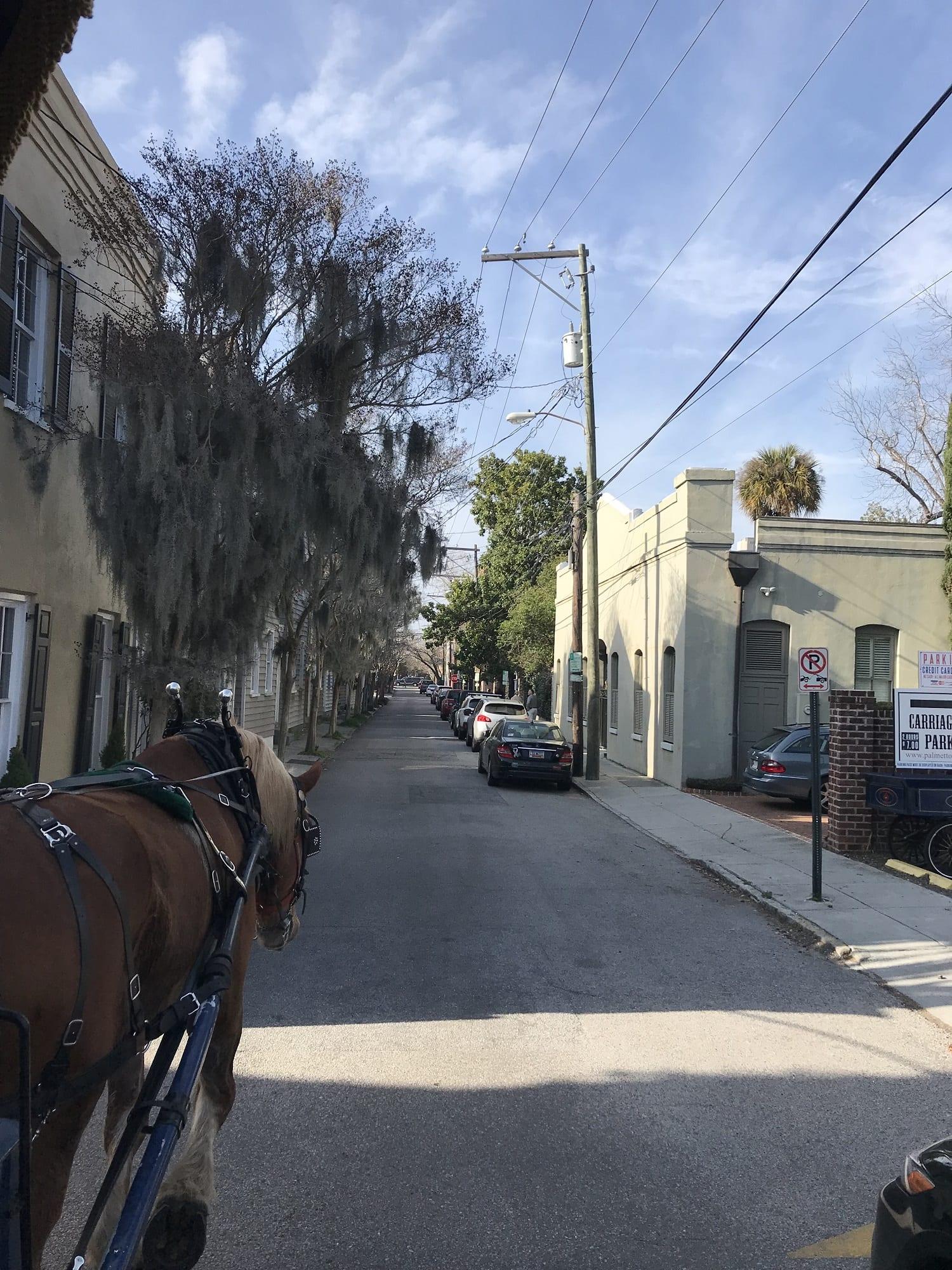 Carriage Ride through Charleston South Carolina