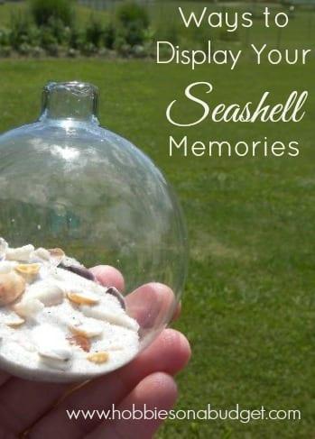 display seashell-memorie-