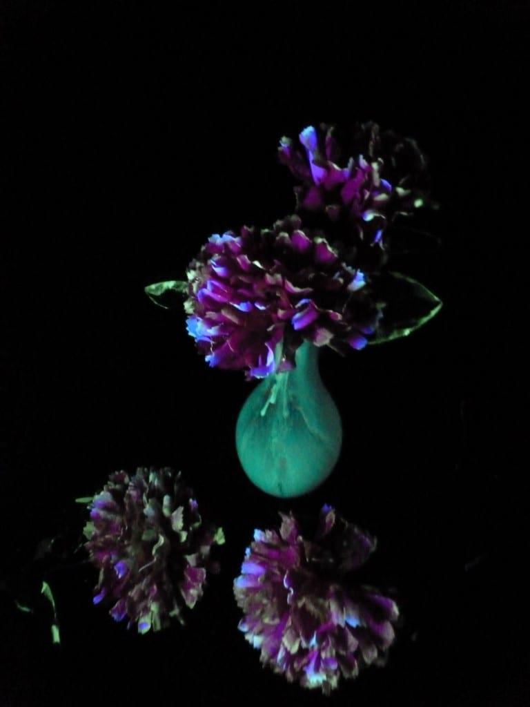Glow in the Dark Flowers