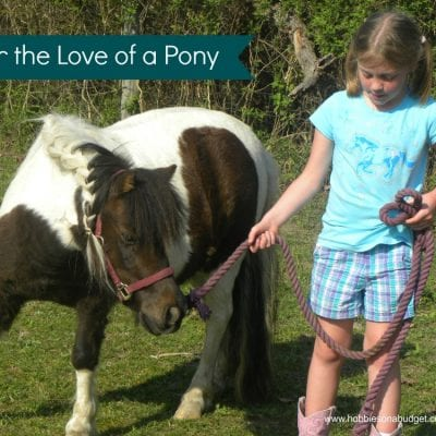 For the Love of a Pony