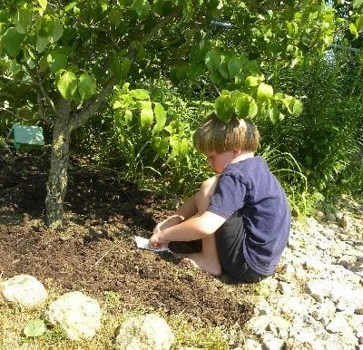 Flower Gardening with Kids