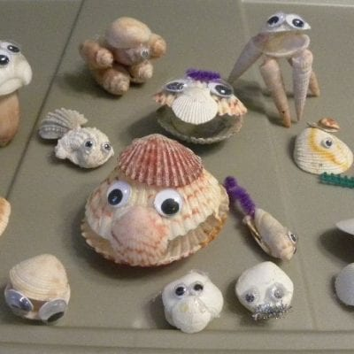 Easy Seashell Animal Creations