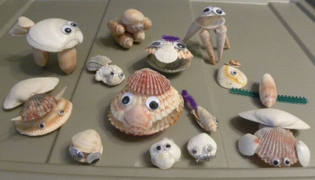 seashell animals