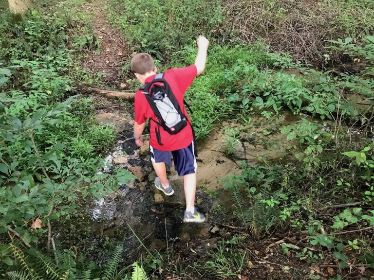 6 Tips for Hiking with Kids