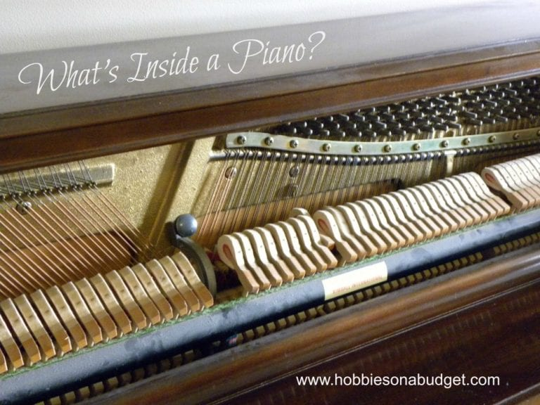 What's Inside a Piano?
