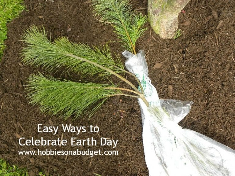 Easy Ways to Celebrate Earth Day