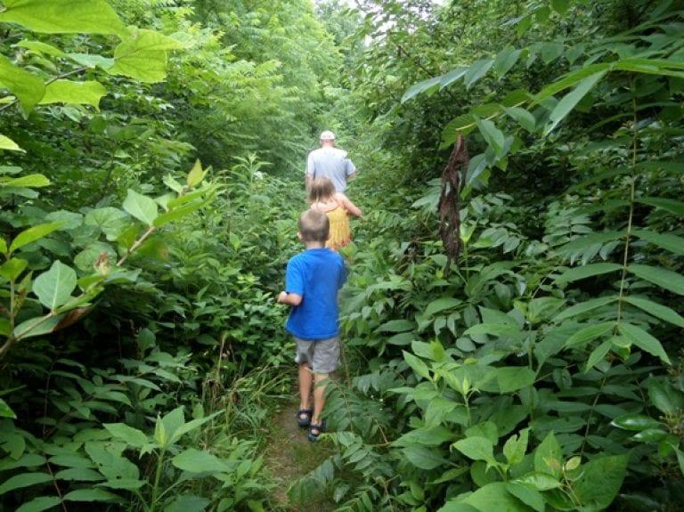 My 6 Favorite Hiking Trails