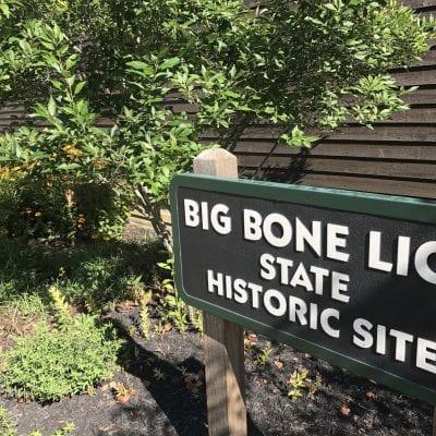 Big Bone Lick State Park, Kentucky