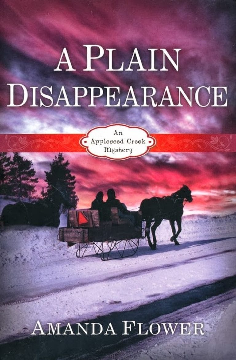 A Plain Disappearance Book Review