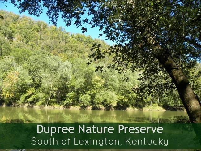 dupree-nature-preserve