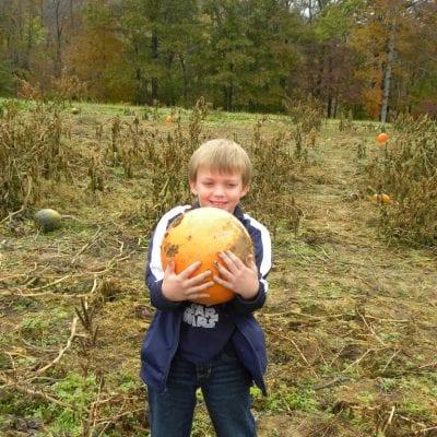Wordless Wednesday – Pumpkin Patch