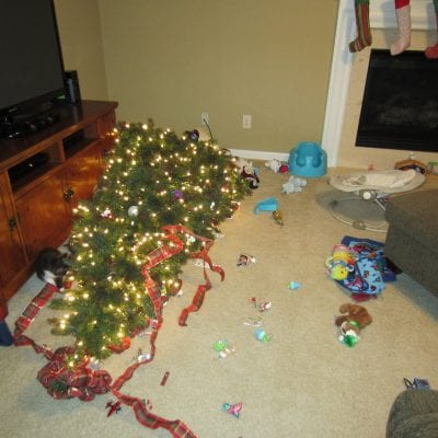 Christmas Tree Spills & Falls