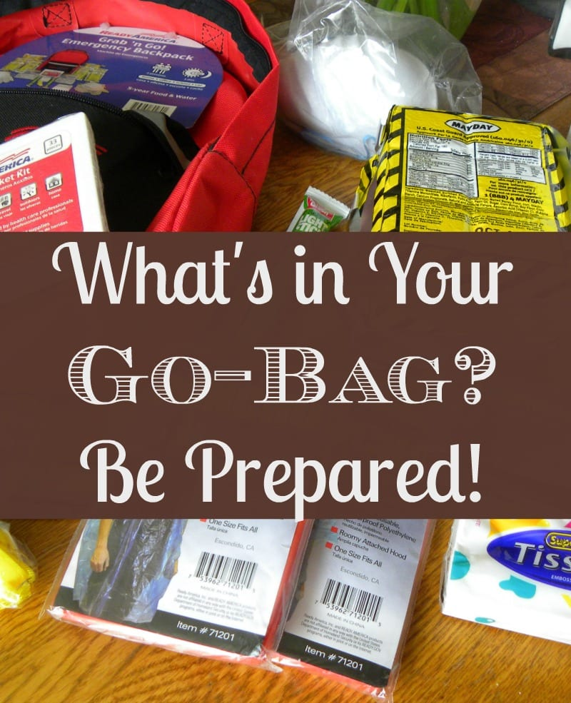 What S In Your Go Bag