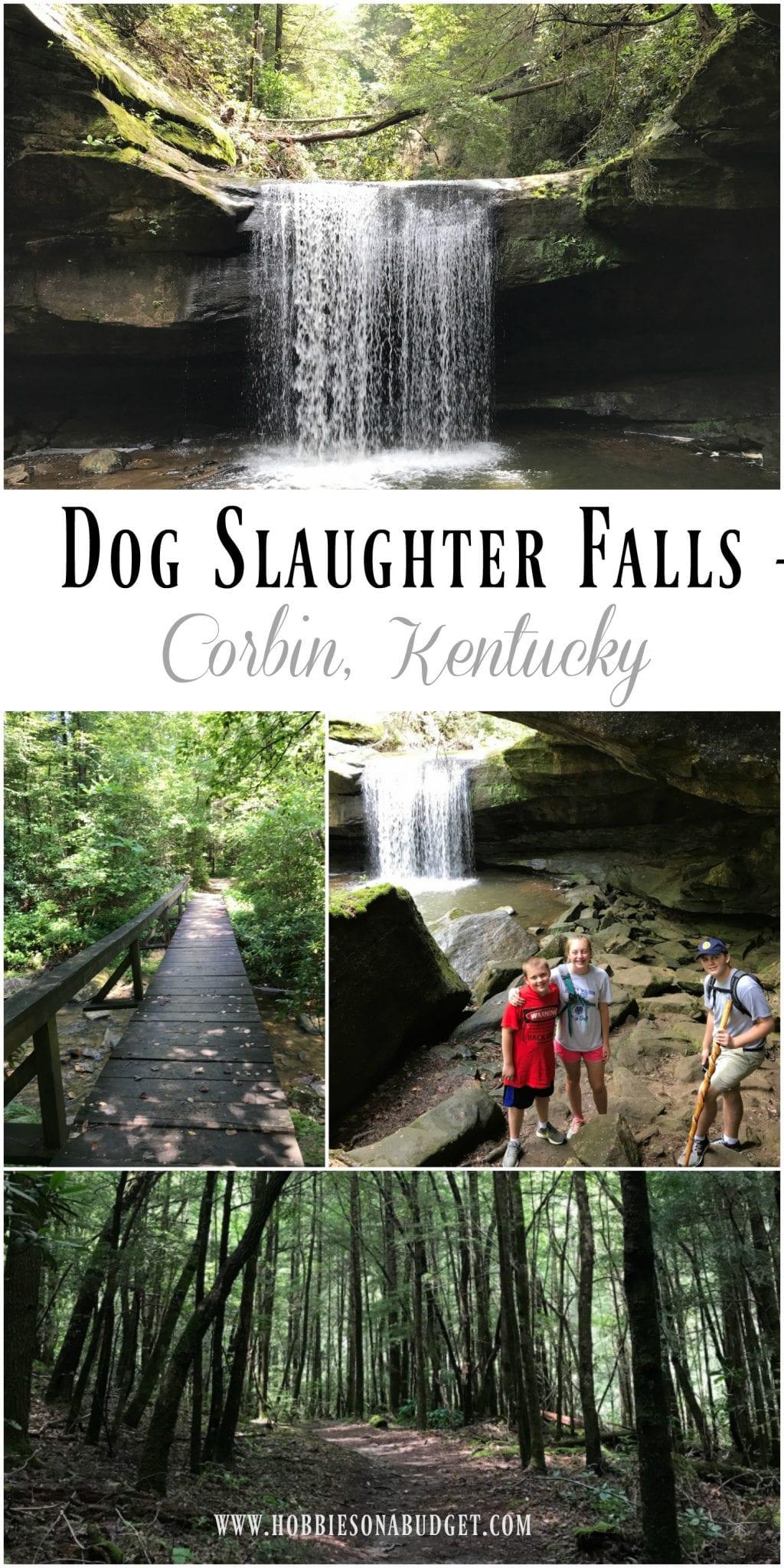 Dog Slaughter Falls Corbin Ky Hobbies On A Budget