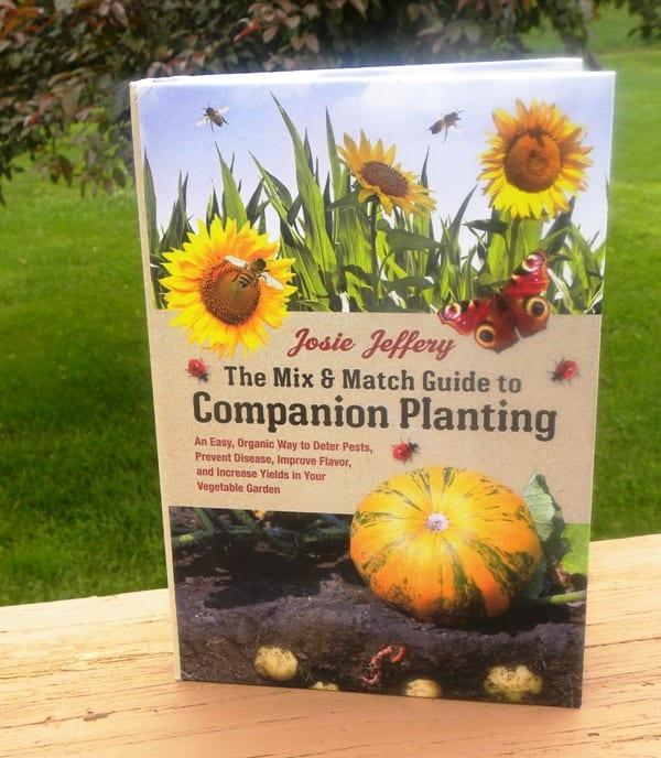 Mix & Match Guide to Companion Planting