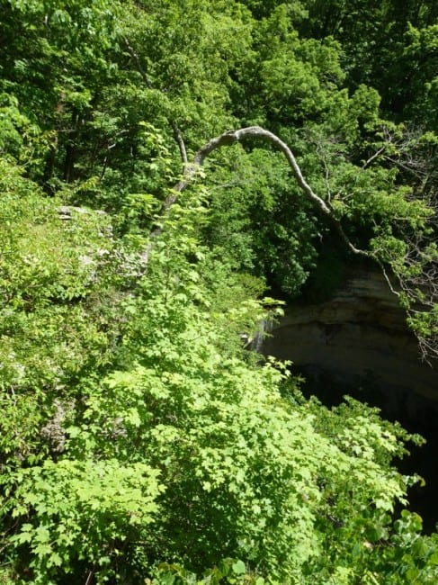 hoffman-falls