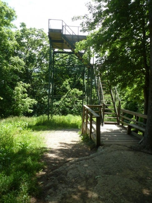 Clifty-falls-observation-tower