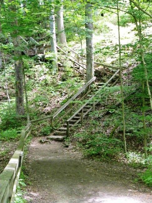 Clifty-falls
