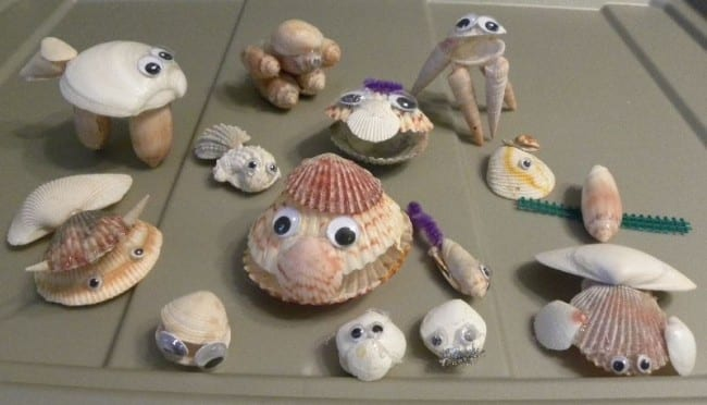 seashell-animals-650x372