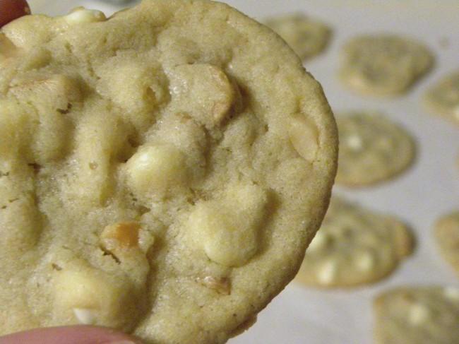white choc macadamian nut cookies
