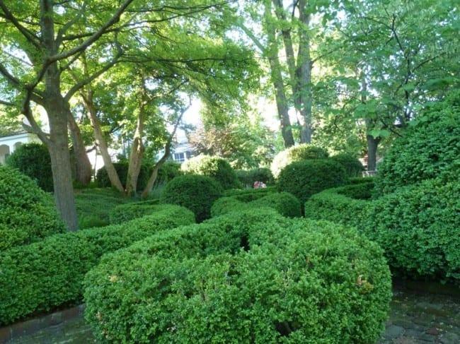 woodrow wilson garden