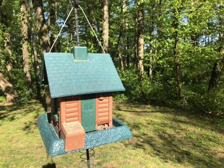 Birdhouses for Every Backyard