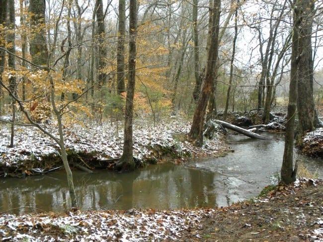 creek 1_tn
