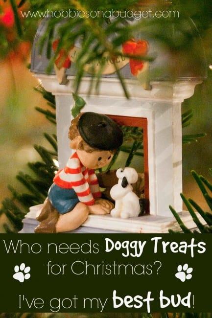 doggyt-treats