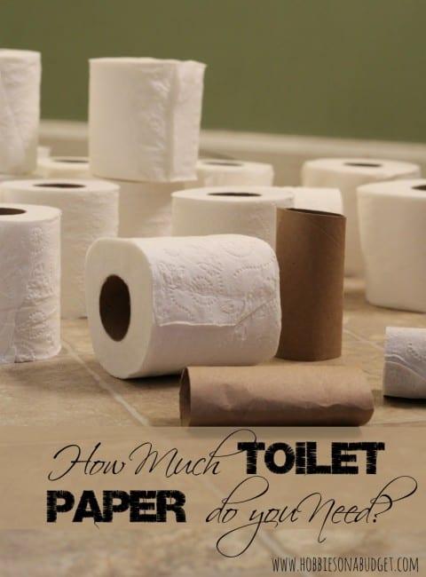 toilet-paper-count