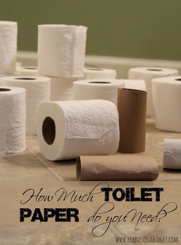 How Much Toilet Paper do you Need?