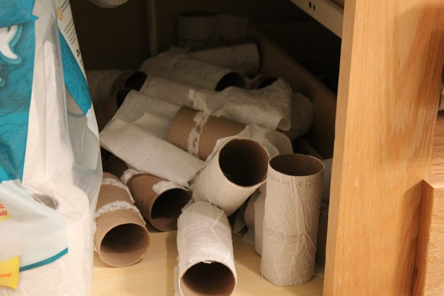 How much Toilet Paper does a Family need?