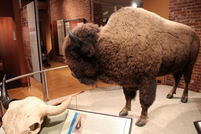 frazier history museum_00001