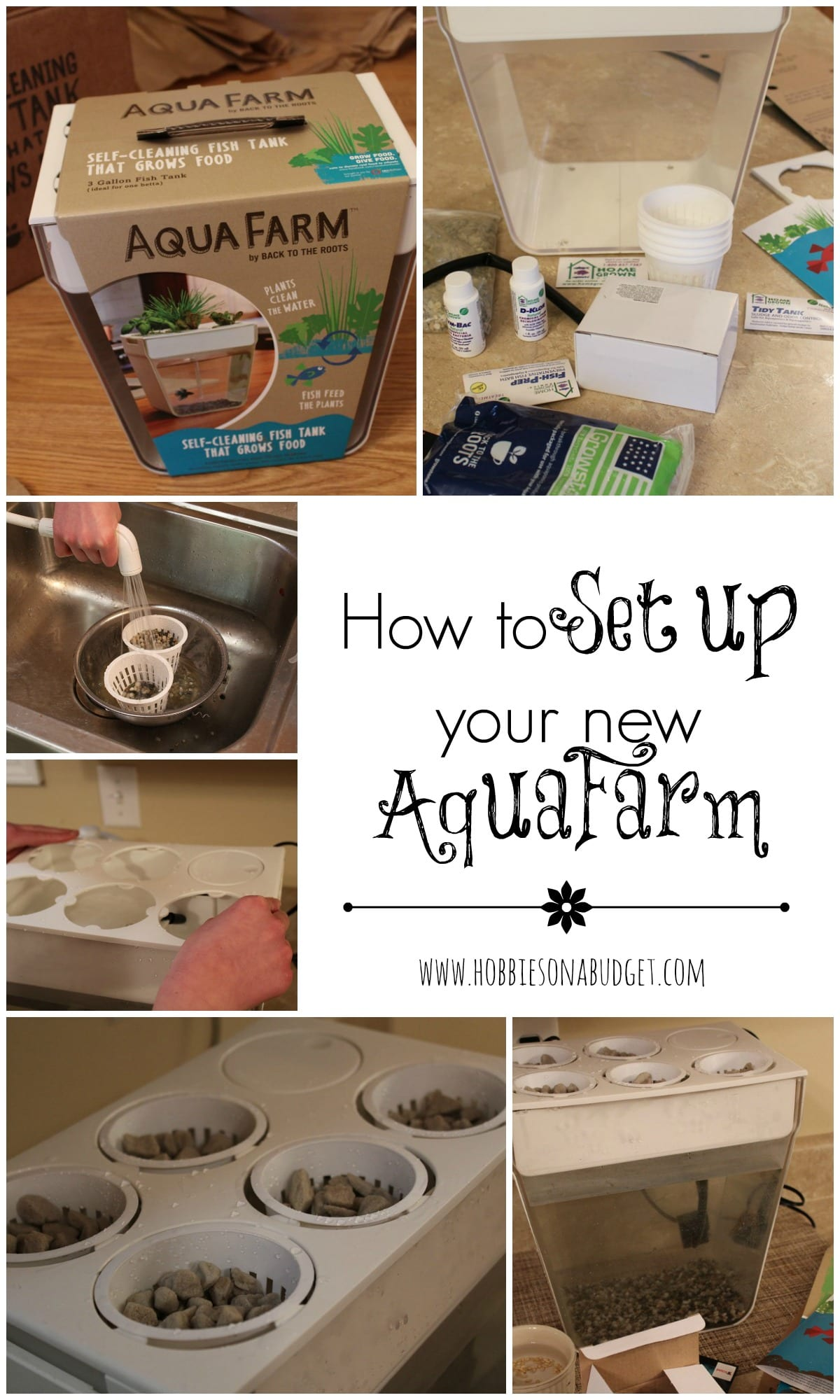 setup-aquafarm