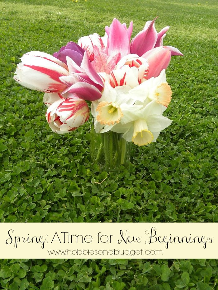 Spring:  A Time for New Beginnings