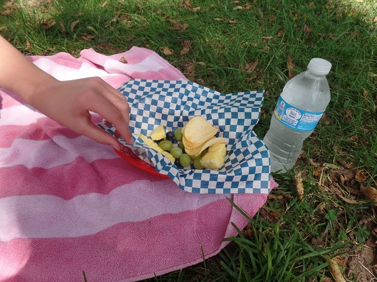 Beechbend-picnic