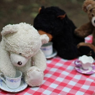 Celebrate Teddy Bear Picnic with Us