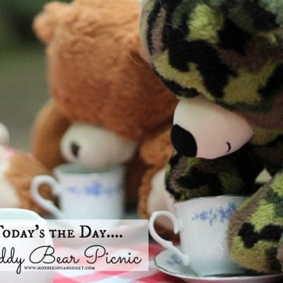 Celebrate Teddy Bear Picnic Day