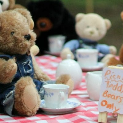 How to Celebrate Teddy Bear Picnic Day